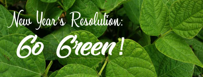 """10 Tips for a """"Green"""" New Year"""